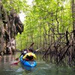 Sea Kayaking Thailand