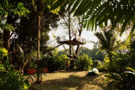 ko-chang-tree-top-table-6